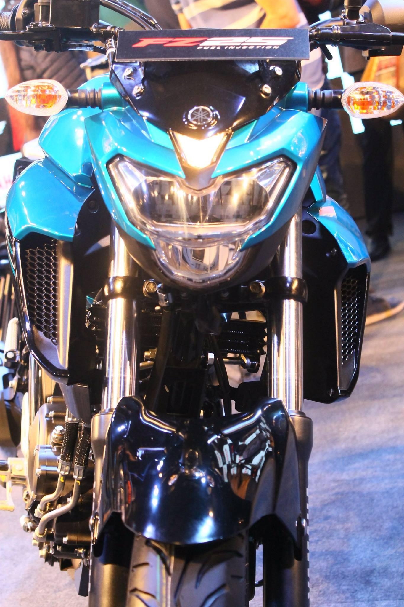 Yamaha-FZ25-India-5