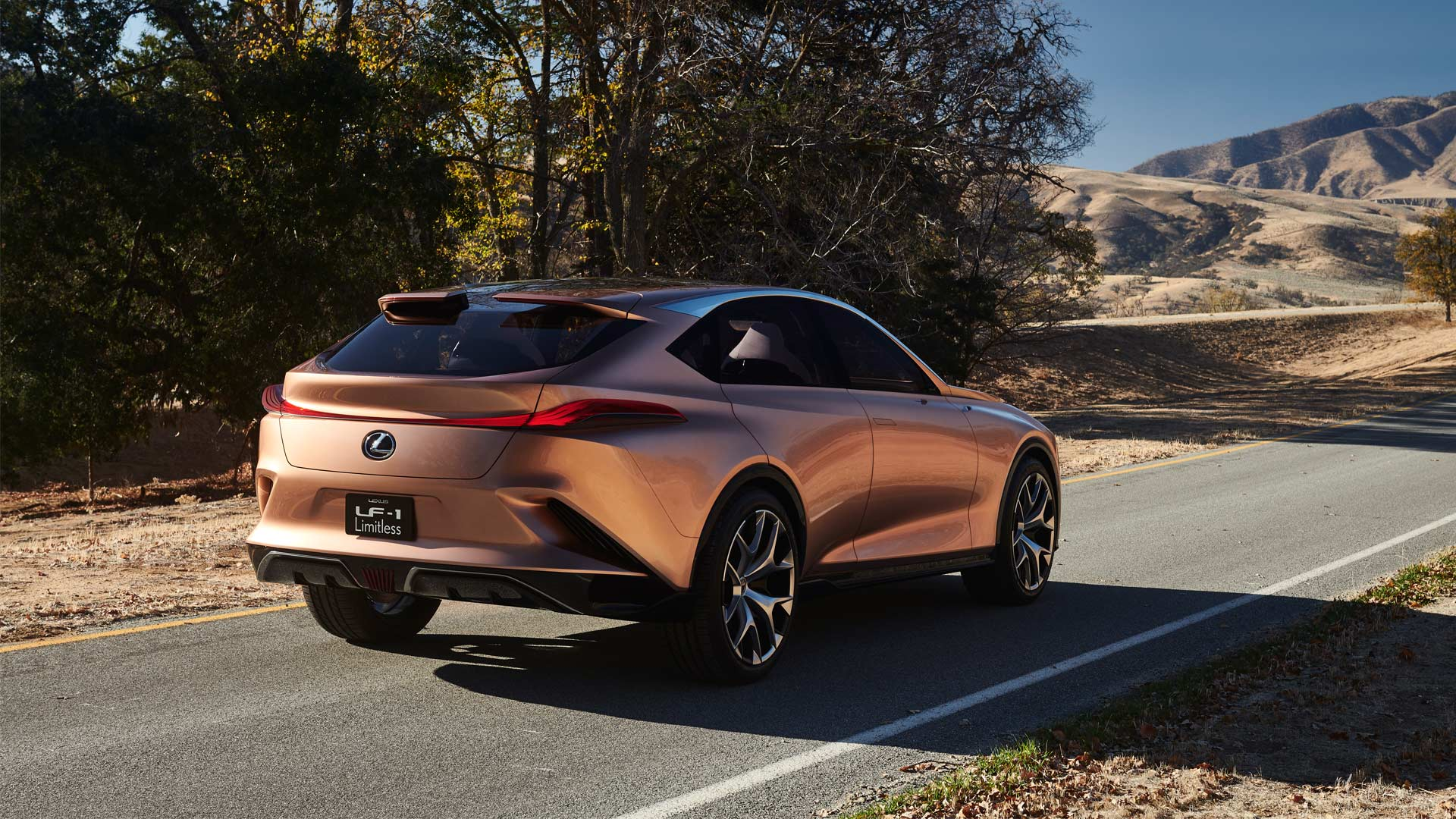 Lexus-LF-1-Limitless-Concept_2