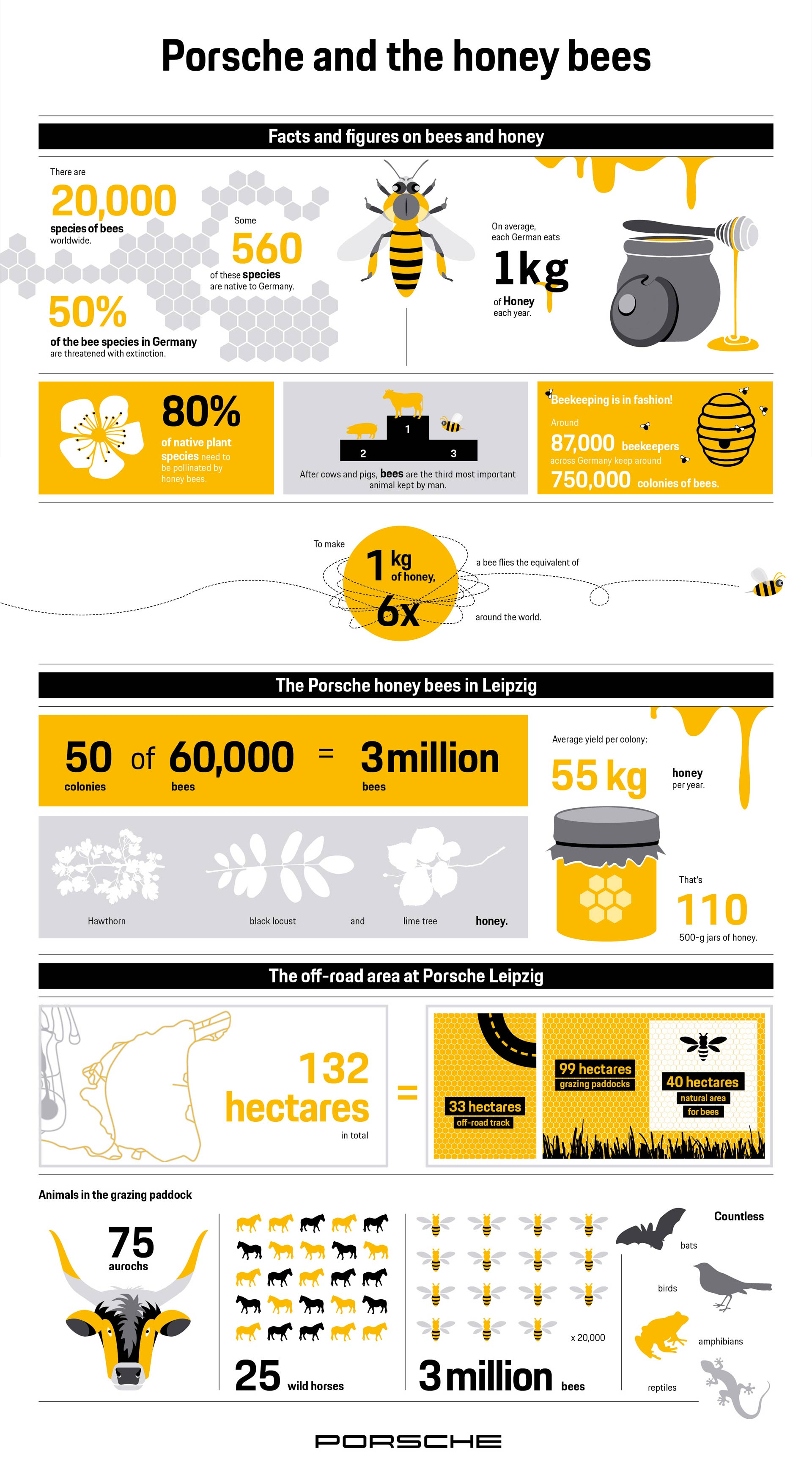 Porsche-Leipzig-Honey-Bees-infographic