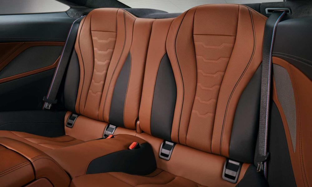 2019-BMW-8-Series-M850i-interior_7