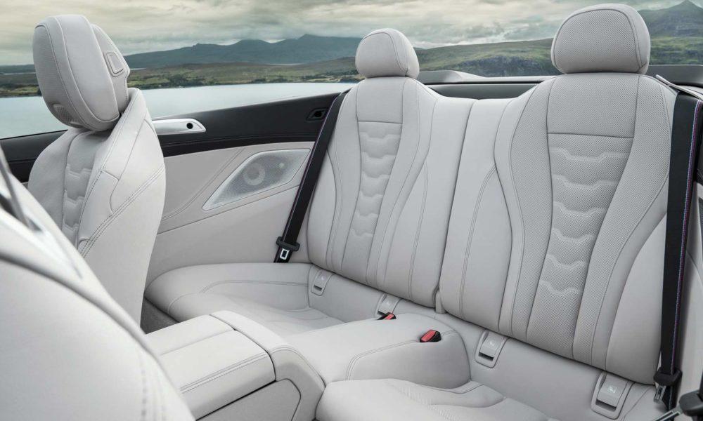 2019-BMW-8-Series-Convertible-Interior_4
